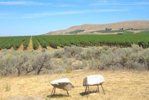 Yakima Valley High Desert Region