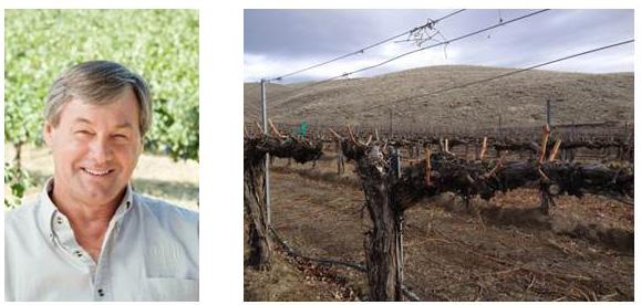 Larry Pearson, Owner Tapteil Vineyard