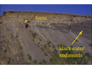 Slackwater sediment and loess soil of the Yakima Valley AVA