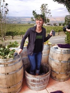 Grape stomp at Tapteil Vineyard Winery